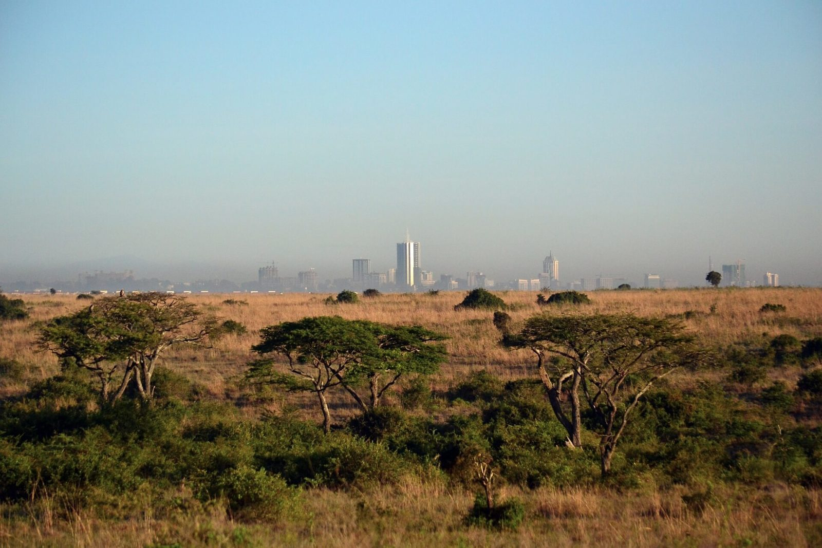 Nairobi National Park - Skyline