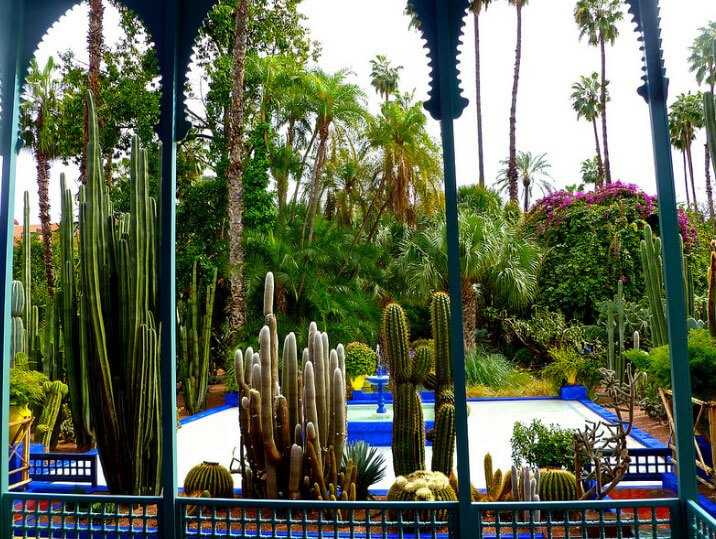 Things to do in Marrakech - Jardin Majorelle
