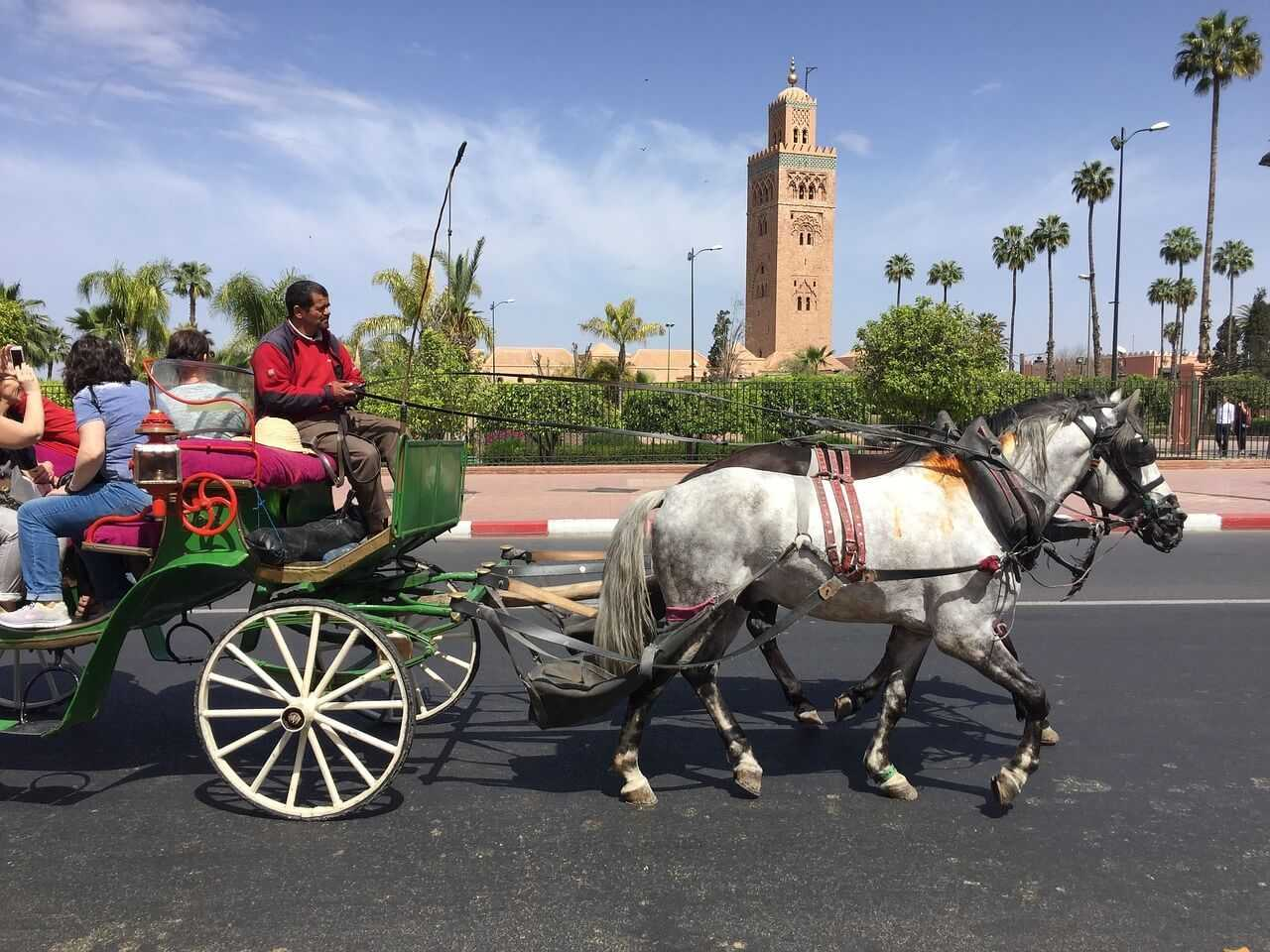 Things to do in Marrakech - Koutoubia Mosque