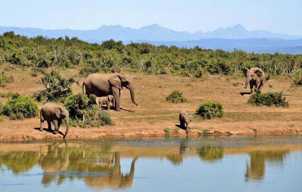 Marsabit National Park and Reserve