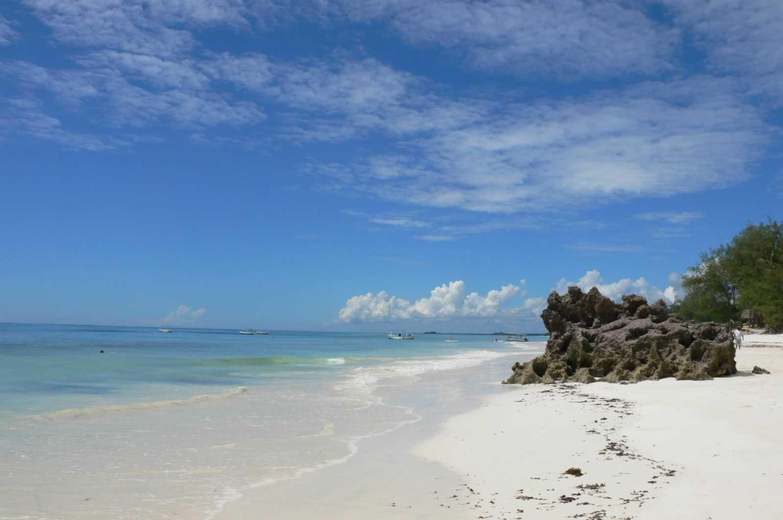 Kenya's National Parks - Mombasa Marine Park