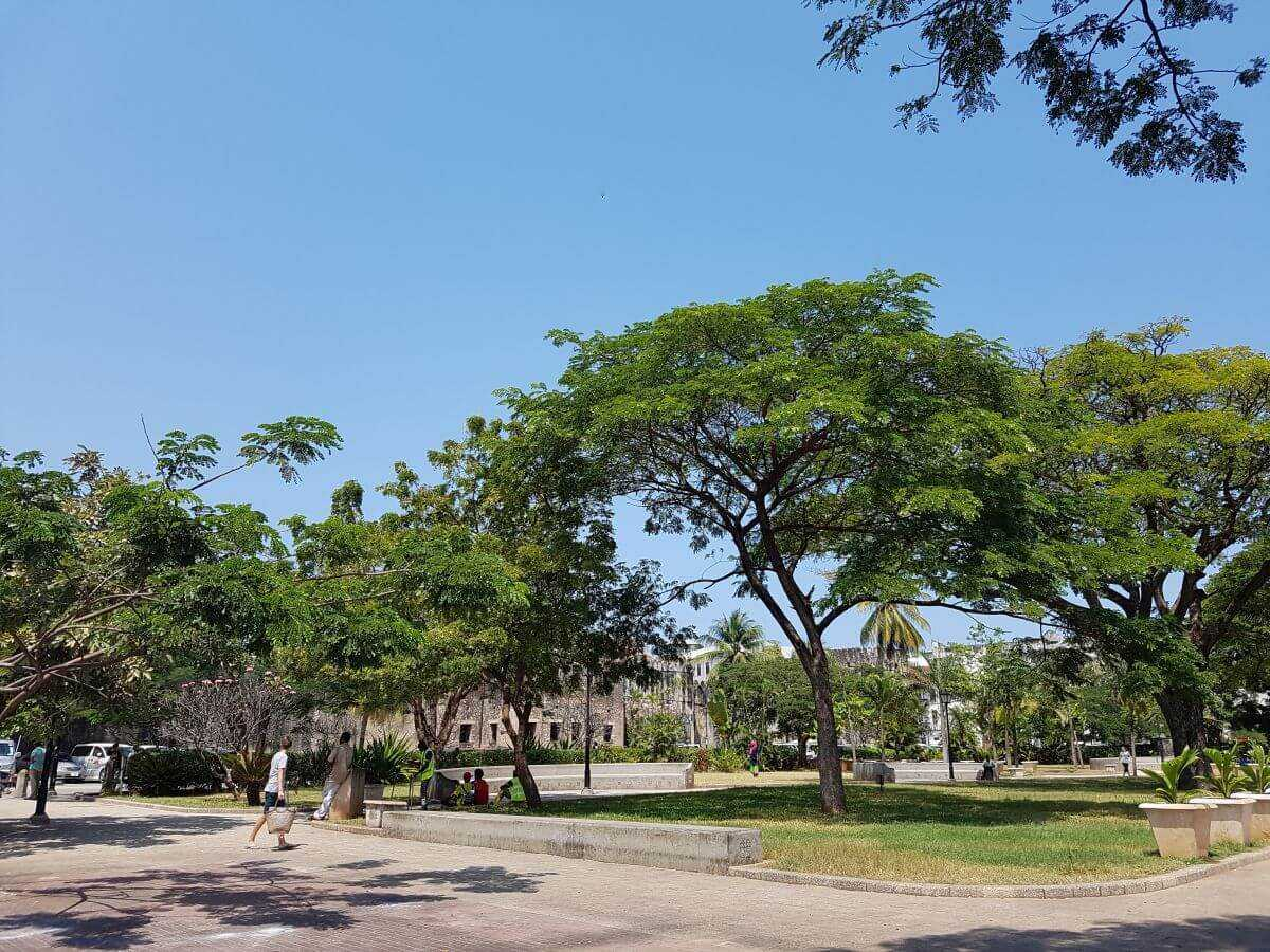 Things to do in Stone Town - Forodhani Gardens