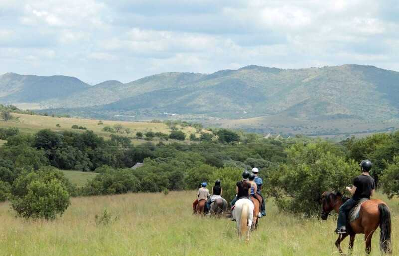 Horseback Tours Johannesburg - landscape