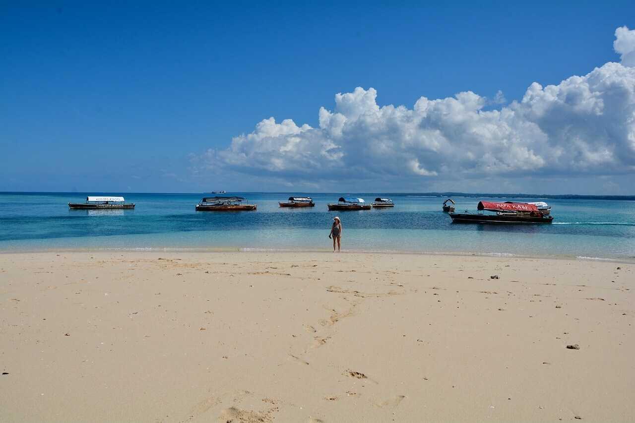 Zanzibar tour_safari_blue