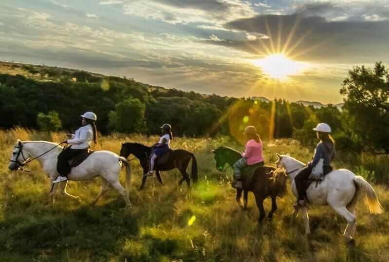 horseback_safari_johannesburg_za