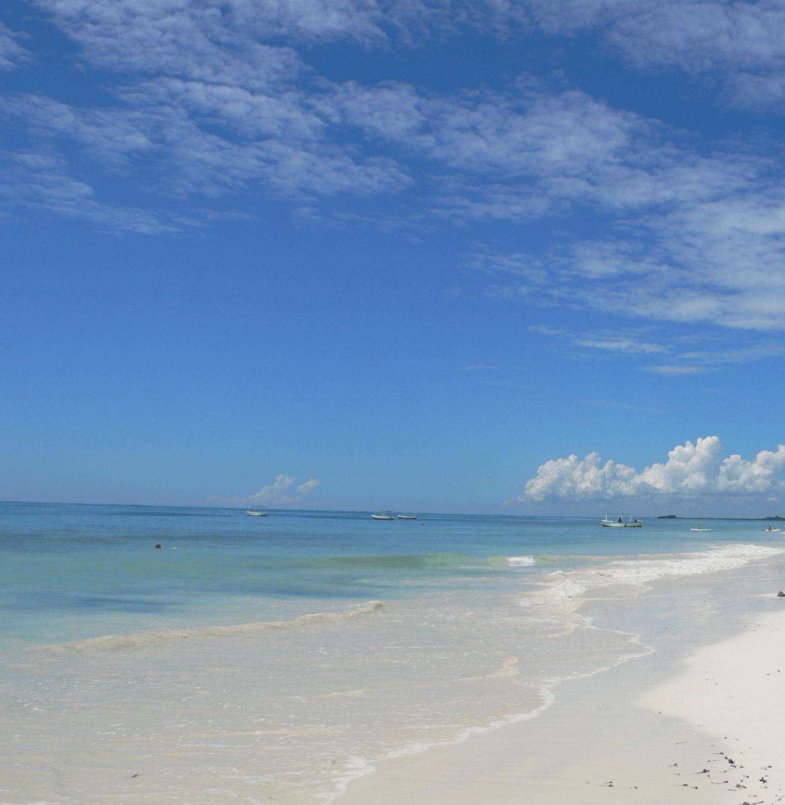 Things to do in Mombasa - tropicalbeach