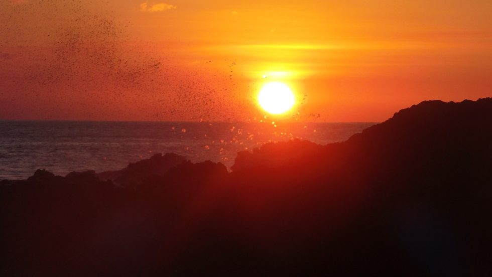 Things to Do in Boa Vista - tours sunset
