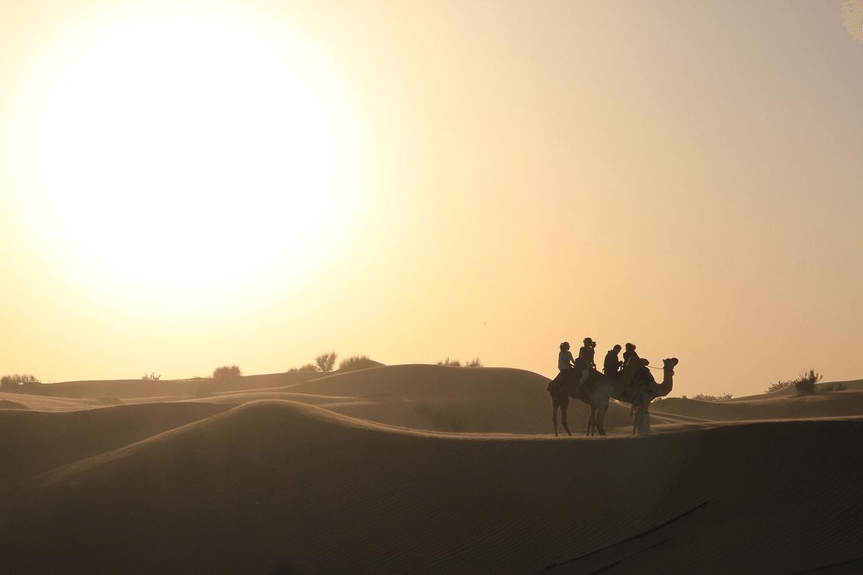 Dubai Desert Tours - Camel Ride