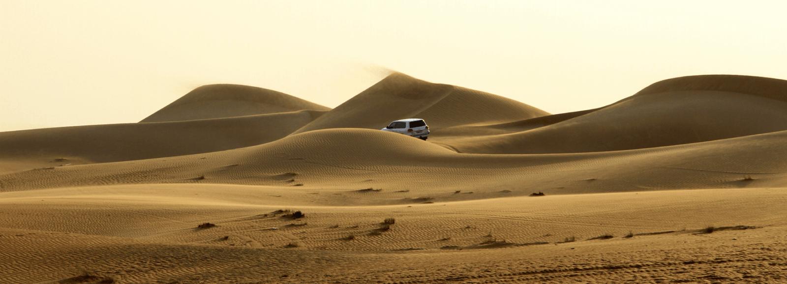 Desert Tour Dubai Dune Barshing