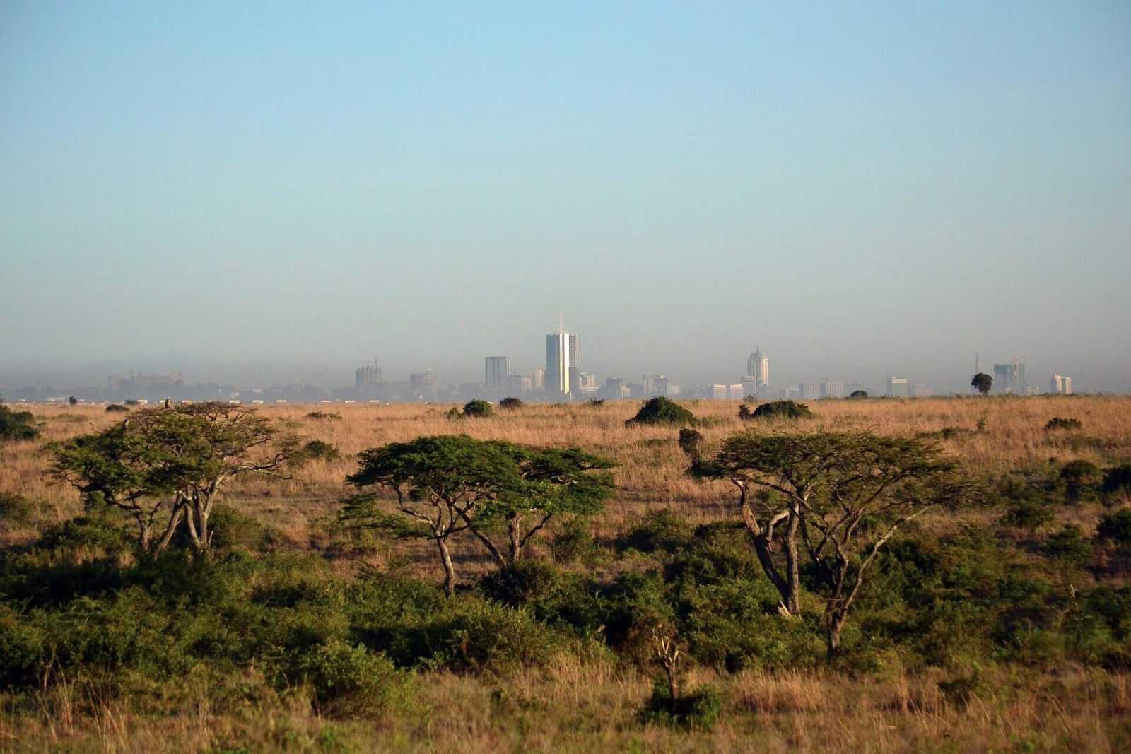 Kenya safari nairobi national_park_tours
