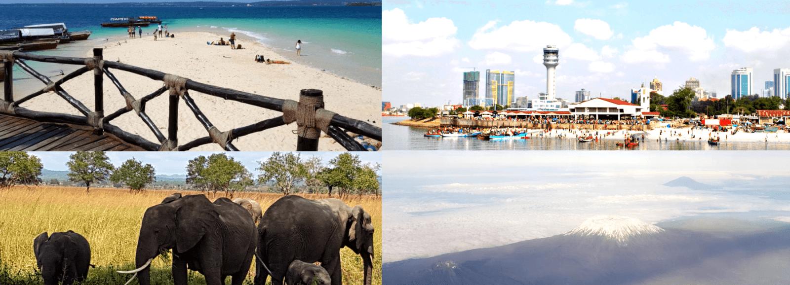 Tanzania Safari City Beach