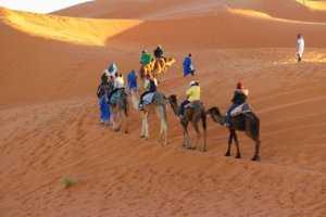 Marrakech Camel Riding Tours Caravan