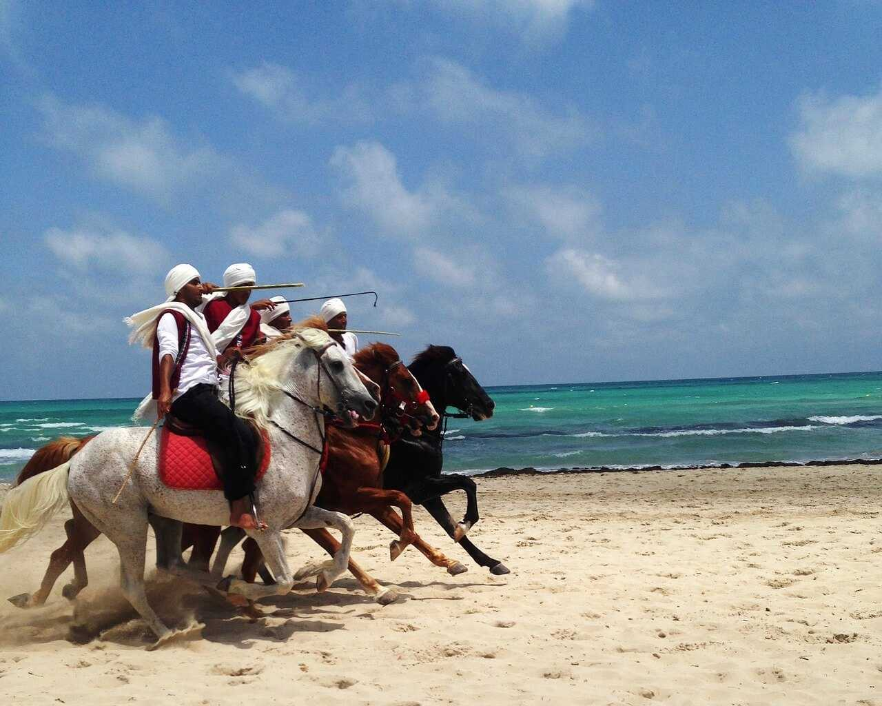 Djerba Holidays Horse Riding Beach