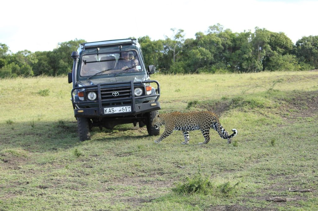 masai-mara-safari_landrover_jeep