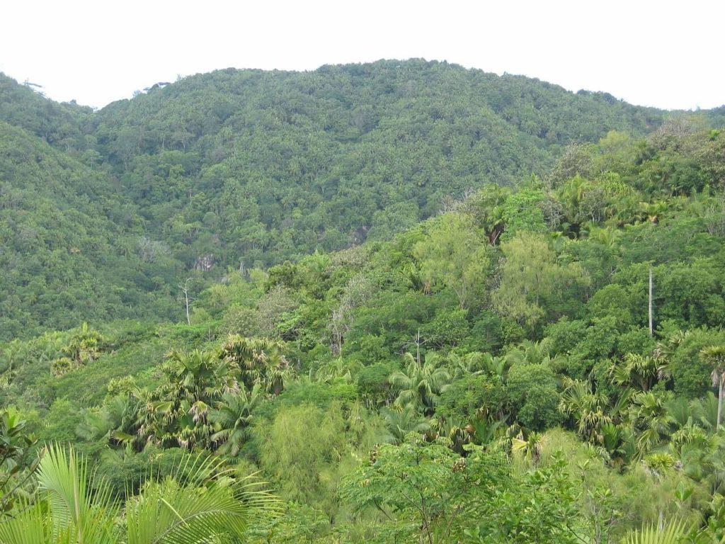 Seychelles Holidays National Park