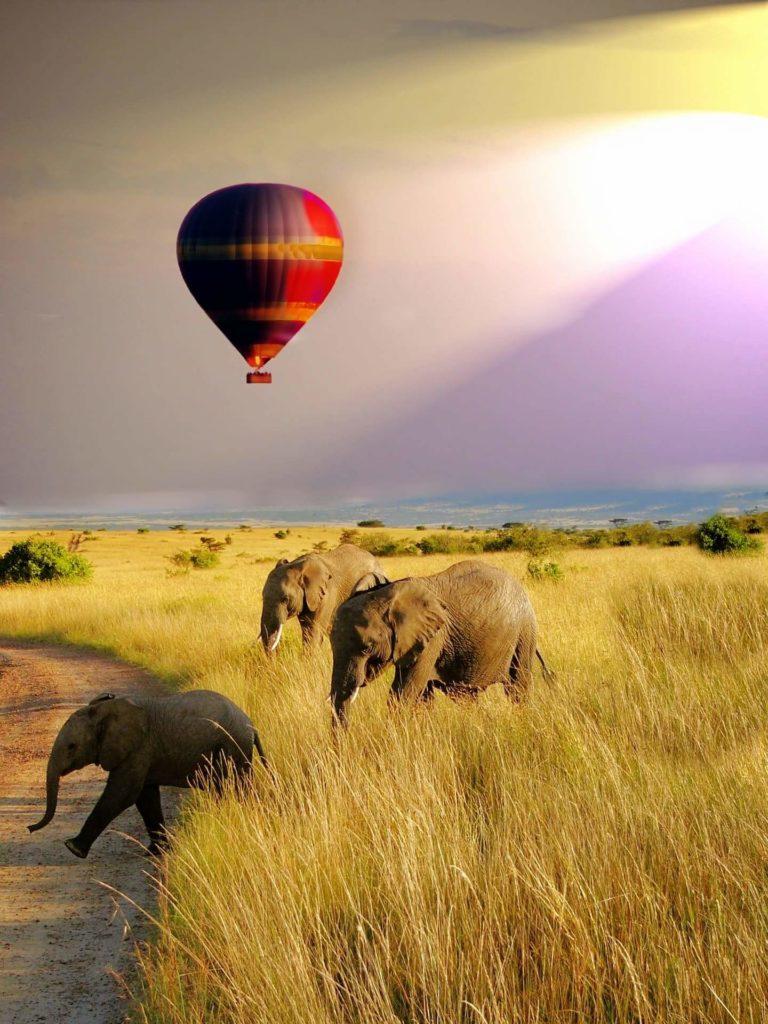 African Safari Tours Balloon