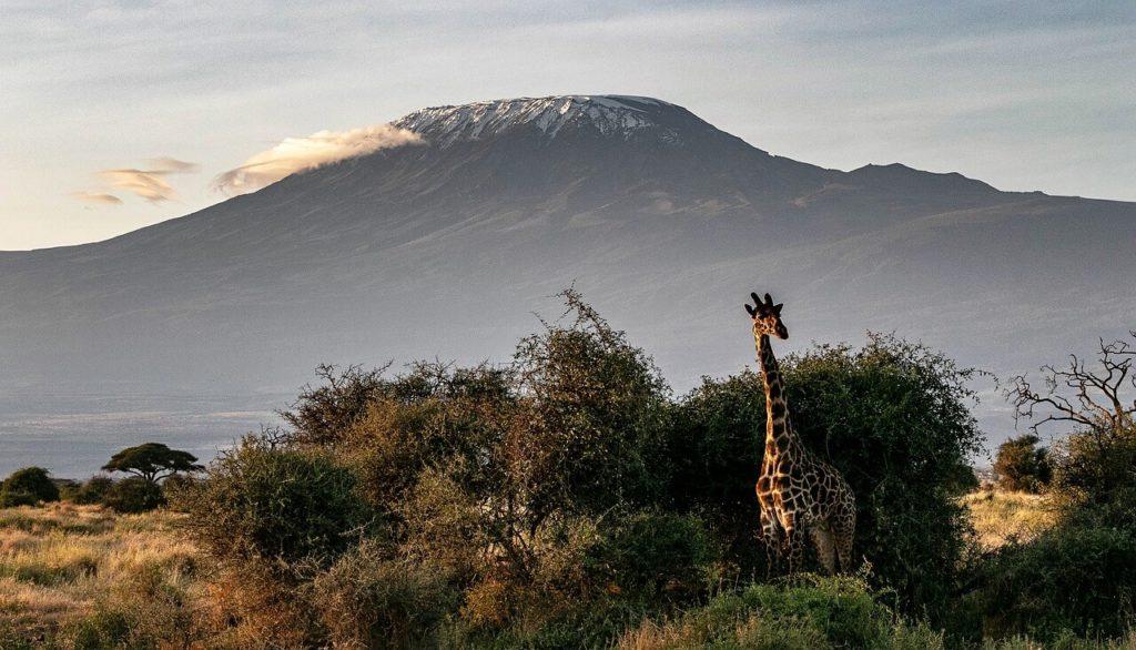 Mount Kilimanjaro, Tanzania - Holidays in Africa