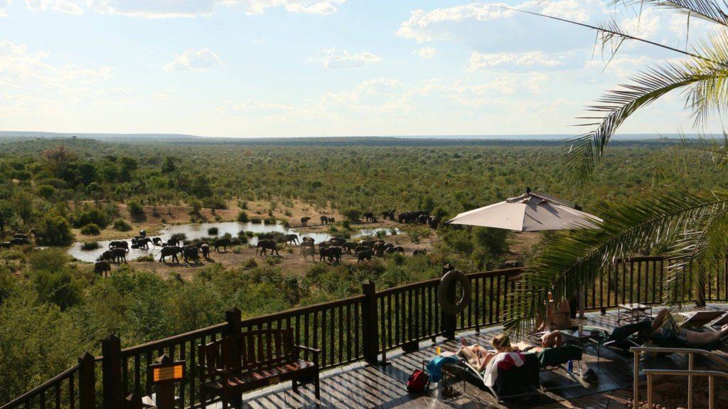 Mana Pools National Park Victoria Falls Safari Lodge