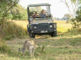 Botswana Safari and Holidays