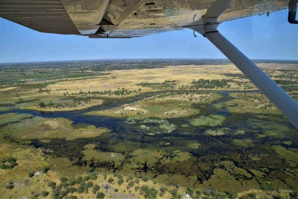 Okavango Delta, Botswana - Holidays in Africa