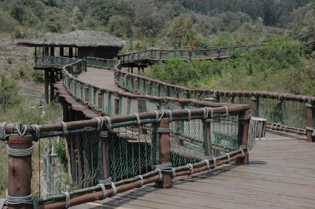 Kenya_Safari_Nairobi Safari Walk
