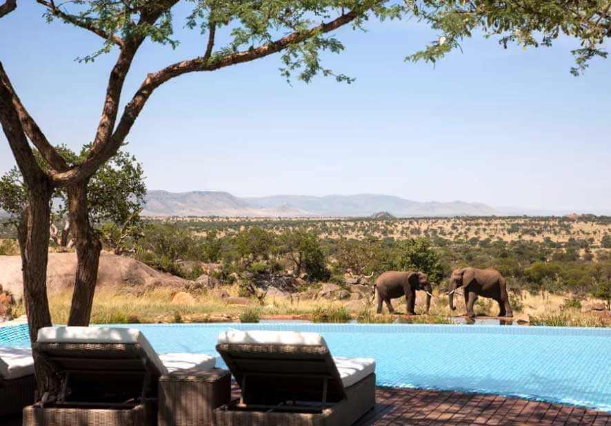 Courtesy Of  Four Seasons Safari Lodge Serengeti