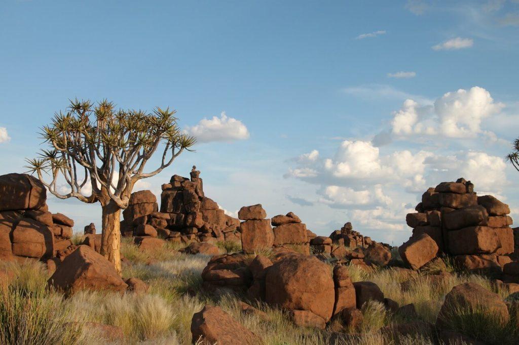Twyfelfontein Namibia Safari and Holidays Guide Kolmanskop Rock Formations