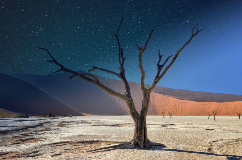 Safari to Namibia & Tips for Your Trip to Namibia - Namib