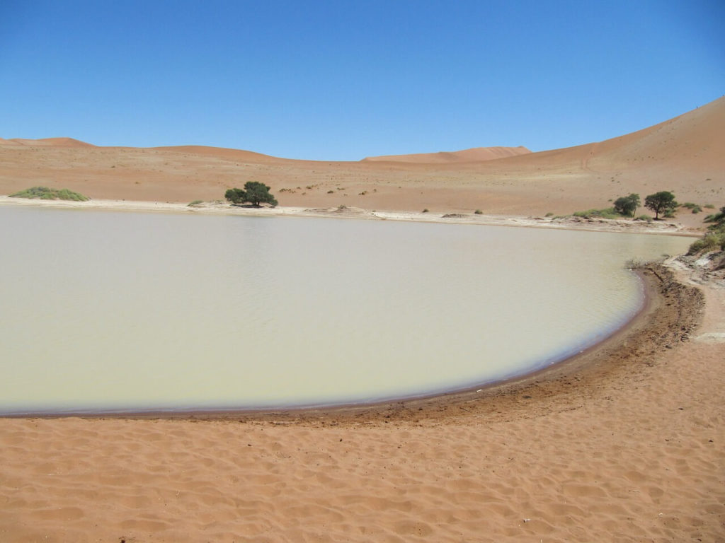 Sossusvlei and Deadvlei Namibia Safari and Holidays Guide