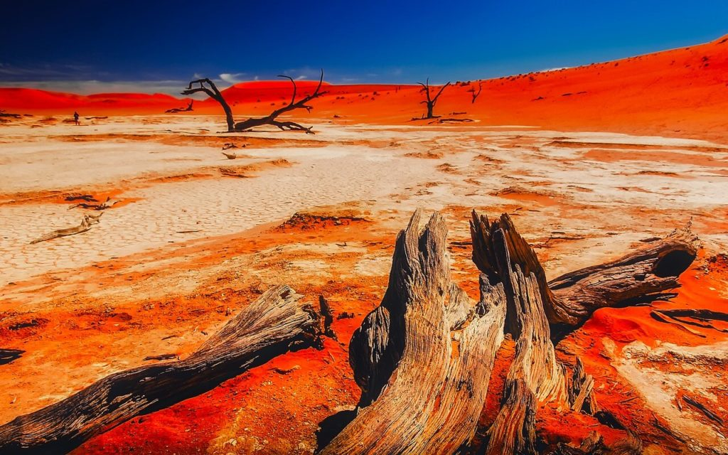 Natural Attractions in Namibia