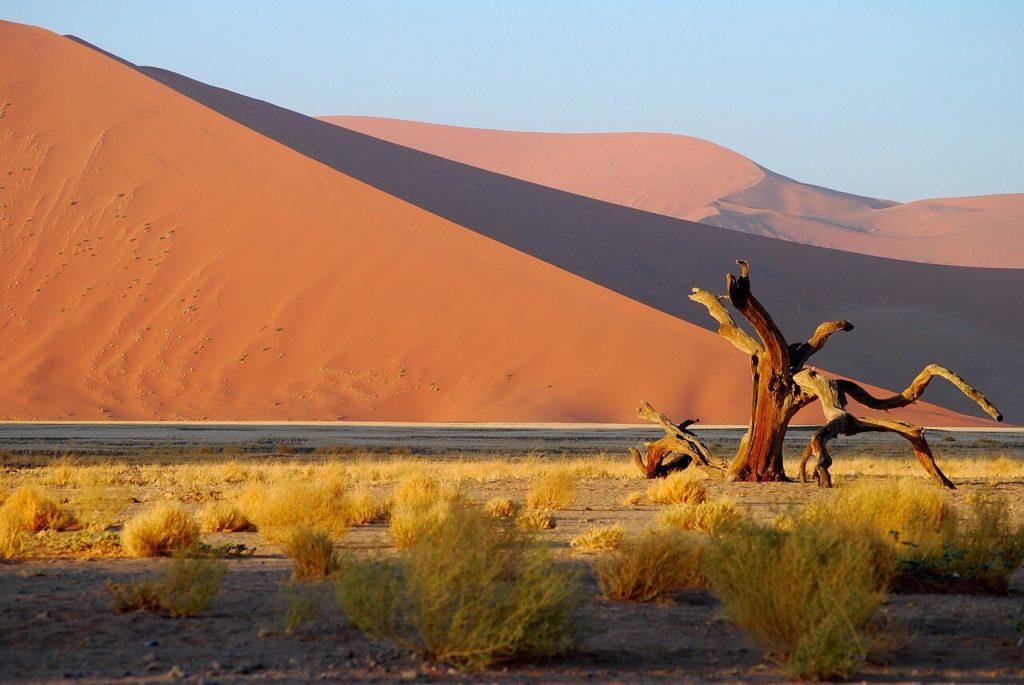 Namibia Safari and Holidays Guide Namib-Naukluft National Park