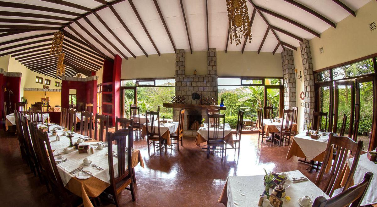 Endore Lodge Planning a Budget Safari in Tanzania - Budget Lodges