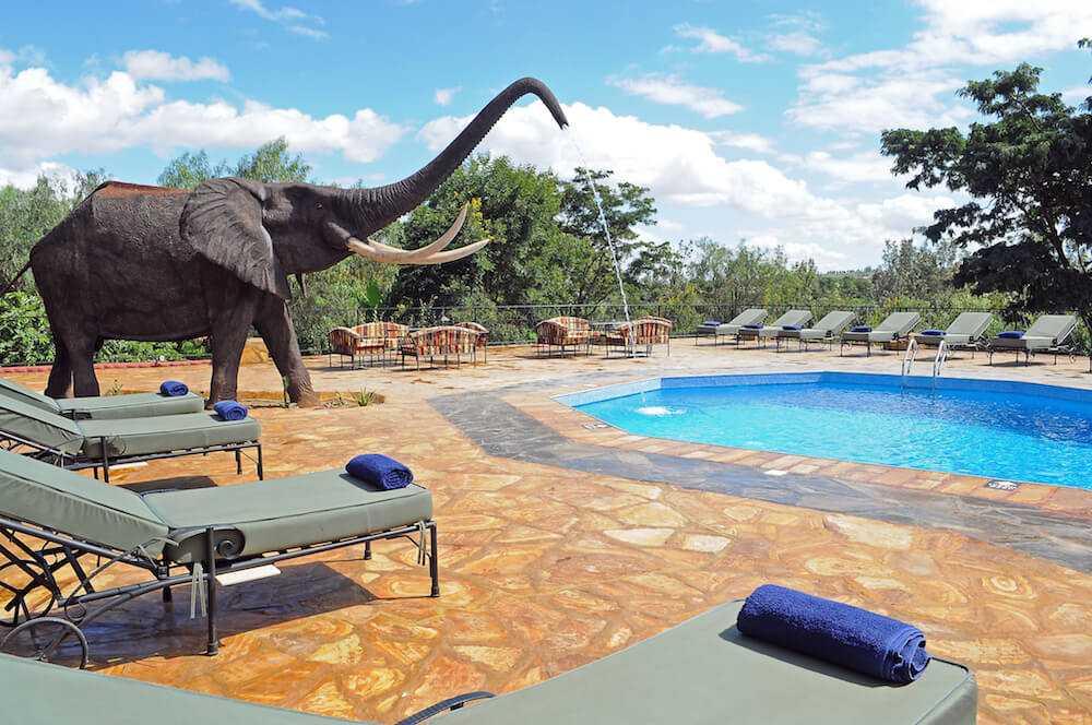 Kudu Lodge - Planning a Budget Safari in Tanzania - Budget Lodges