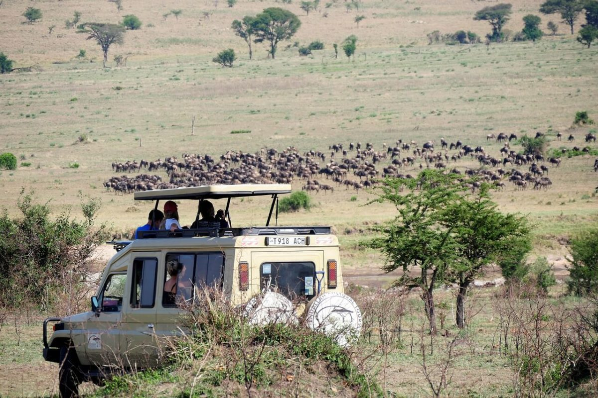 Hire tour operators - Planning a luxury safari in Tanzania