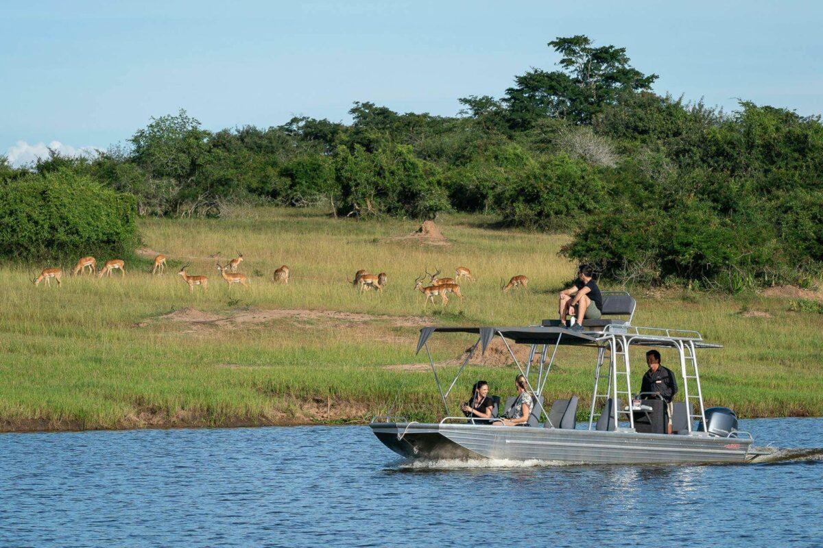 Safari in Rwanda - National Parks & Wildlife Sanctuaries