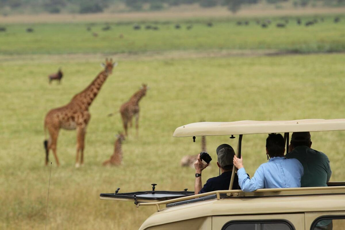 Akagera National Park Safari in Rwanda