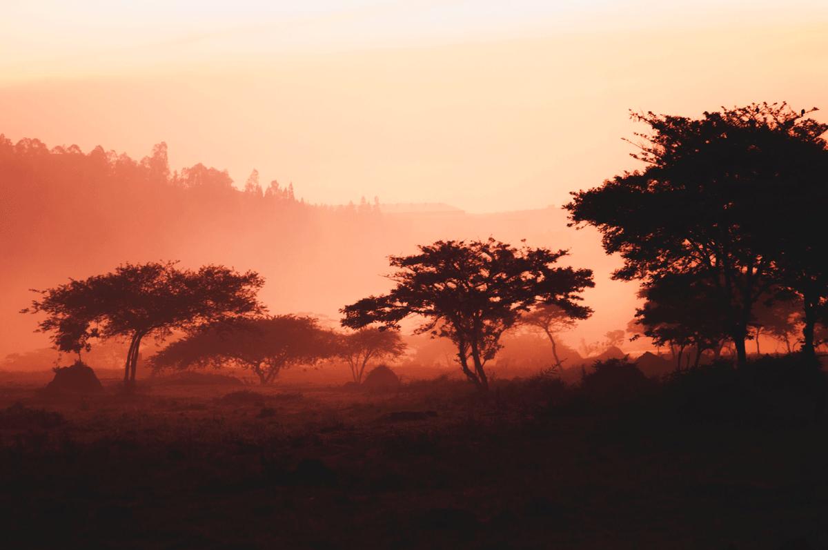 Best Times to Visit Rwanda