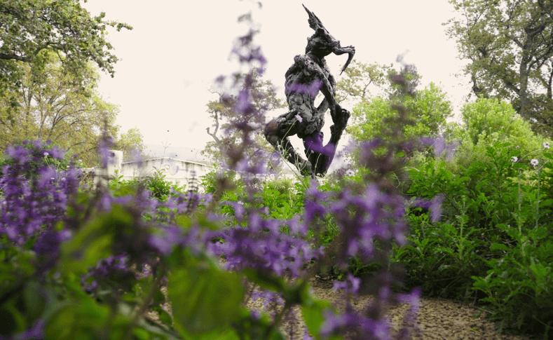 Dylan Lewis Sculpture Garden in Stellenbosch